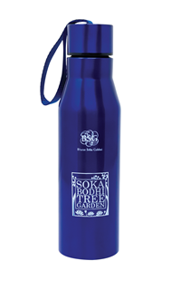 SBTG Insulated Water Bottle - blue
